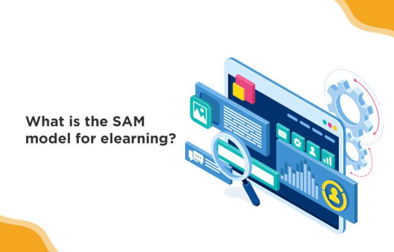SAM model